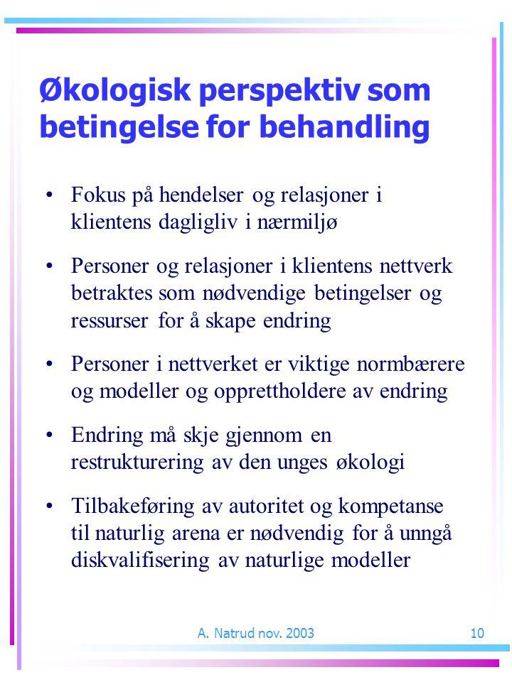 A. Natrud nov. 200310 Fokus på hendelser og relasjoner i klientens dagligliv i nærmiljø Personer og relasjoner i klientens nettverk betraktes som nødv