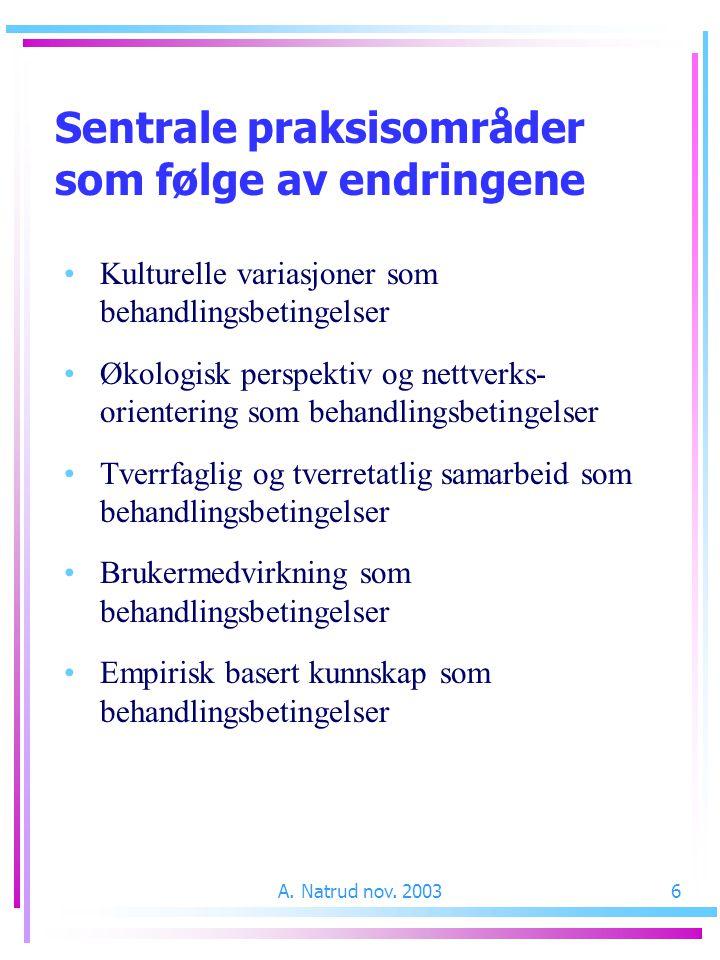 A. Natrud nov. 20036 Sentrale praksisområder som følge av endringene Kulturelle variasjoner som behandlingsbetingelser Økologisk perspektiv og nettver