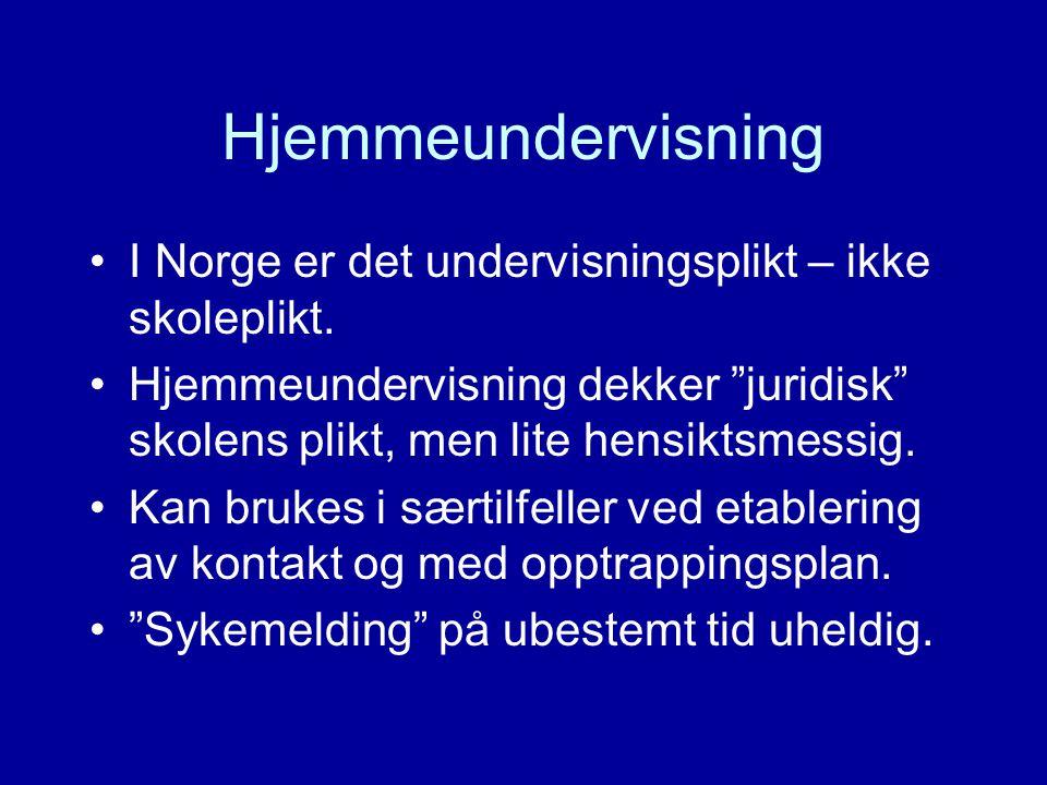 """Hjemmeundervisning I Norge er det undervisningsplikt – ikke skoleplikt. Hjemmeundervisning dekker """"juridisk"""" skolens plikt, men lite hensiktsmessig. K"""
