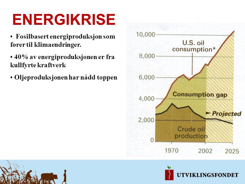 ENERGIKRISE Fosilbasert energiproduksjon som fører til klimaendringer. 40% av energiproduksjonen er fra kullfyrte kraftverk Oljeproduksjonen har nådd