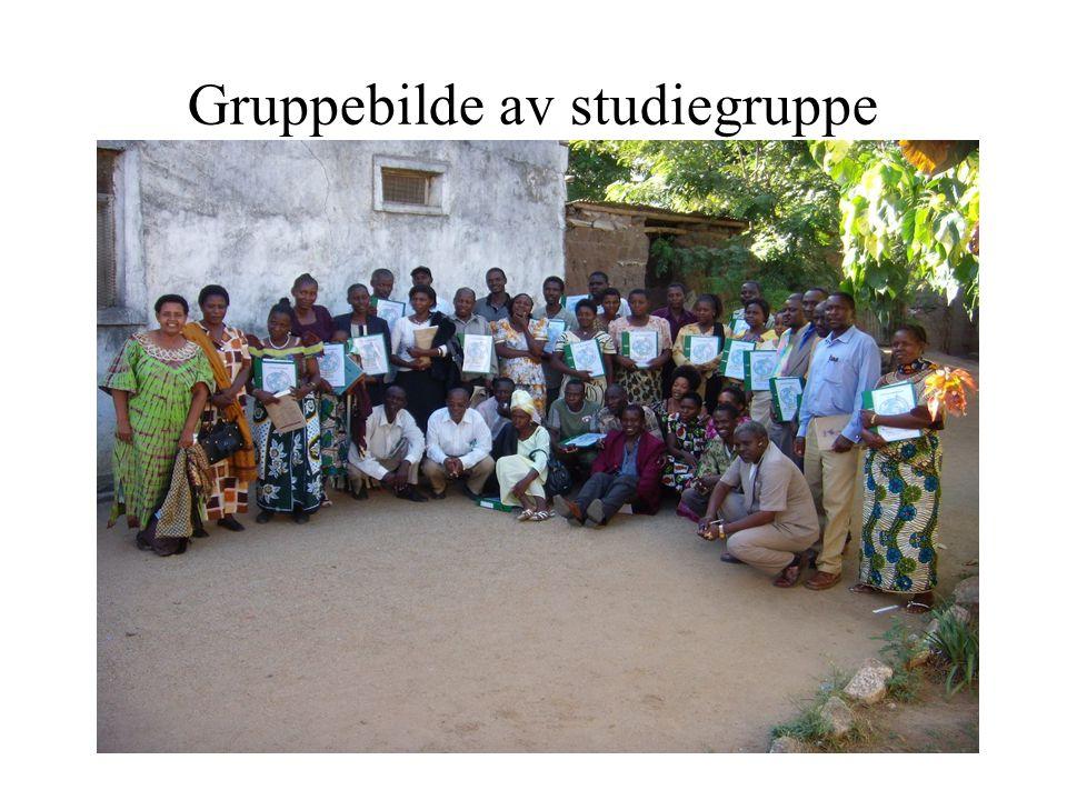 Gruppebilde av studiegruppe
