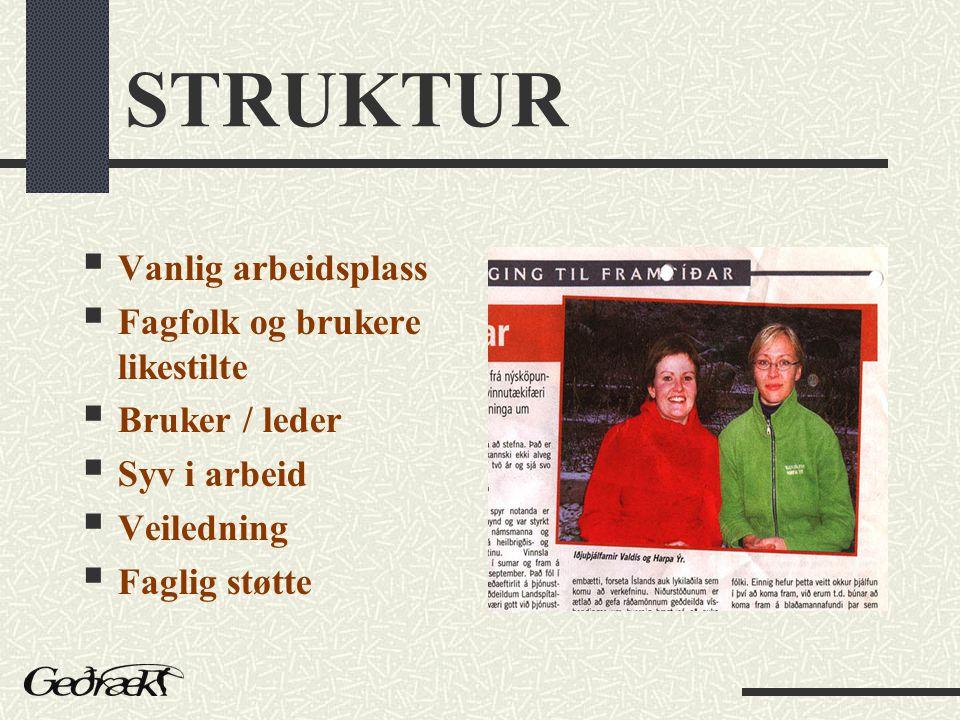 STRUKTUR  Vanlig arbeidsplass  Fagfolk og brukere likestilte  Bruker / leder  Syv i arbeid  Veiledning  Faglig støtte