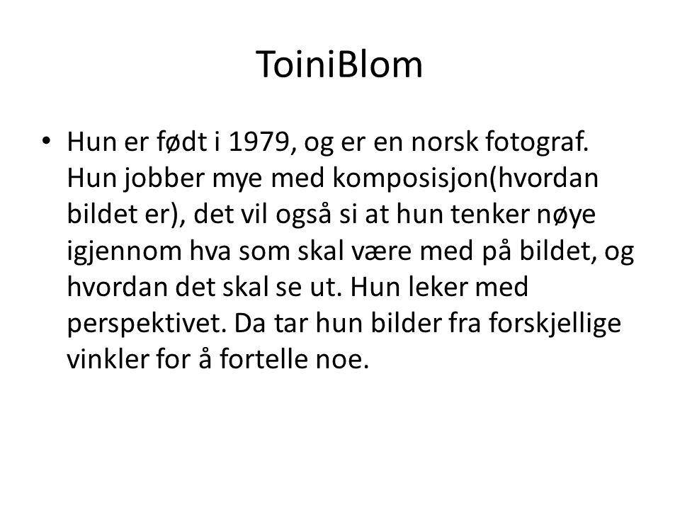 ToiniBlom Hun er født i 1979, og er en norsk fotograf. Hun jobber mye med komposisjon(hvordan bildet er), det vil også si at hun tenker nøye igjennom