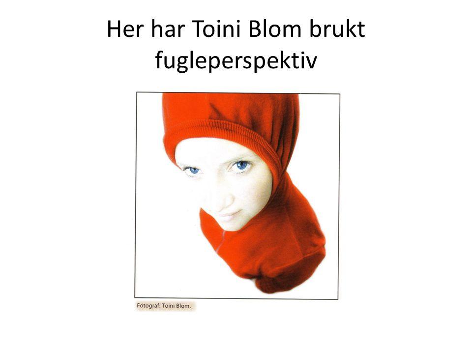 Her har Toini Blom brukt fugleperspektiv