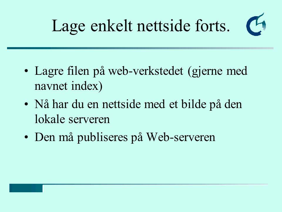 Lagre filen på web-verkstedet (gjerne med navnet index) Nå har du en nettside med et bilde på den lokale serveren Den må publiseres på Web-serveren Lage enkelt nettside forts.