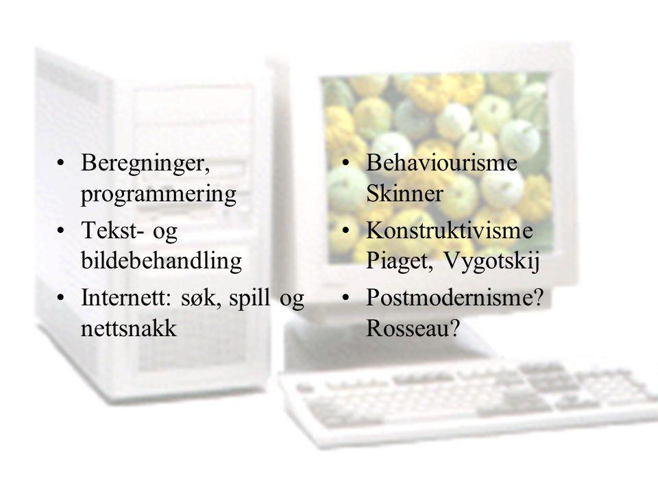 Beregninger, programmering Tekst- og bildebehandling Internett: søk, spill og nettsnakk Behaviourisme Skinner Konstruktivisme Piaget, Vygotskij Postmo