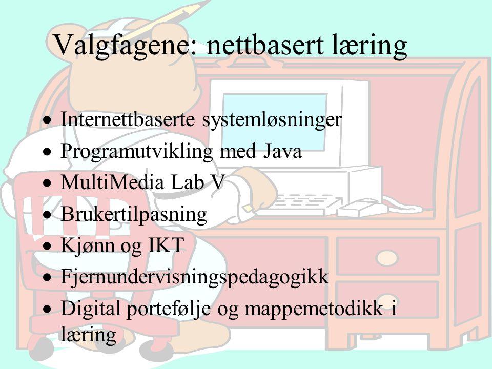 Valgfagene: nettbasert læring  Internettbaserte systemløsninger  Programutvikling med Java  MultiMedia Lab V  Brukertilpasning  Kjønn og IKT  Fj