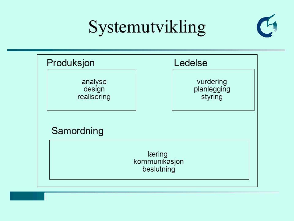 Systemutvikling ProduksjonLedelse Samordning analyse design realisering vurdering planlegging styring læring kommunikasjon beslutning