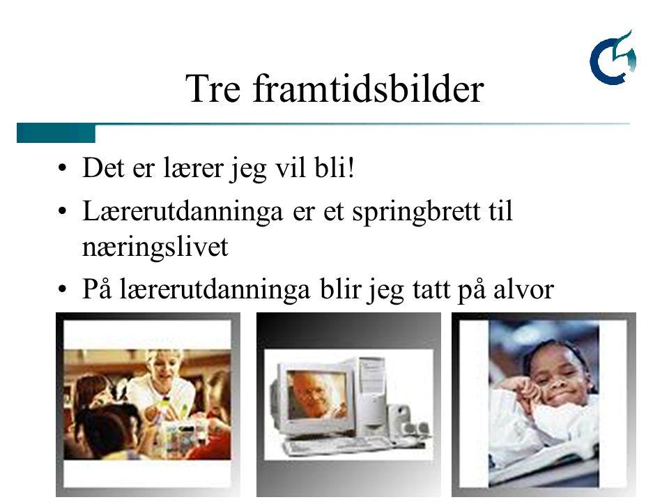 Lærerutdanning 2005, L. Øgrim Tre framtidsbilder Det er lærer jeg vil bli.