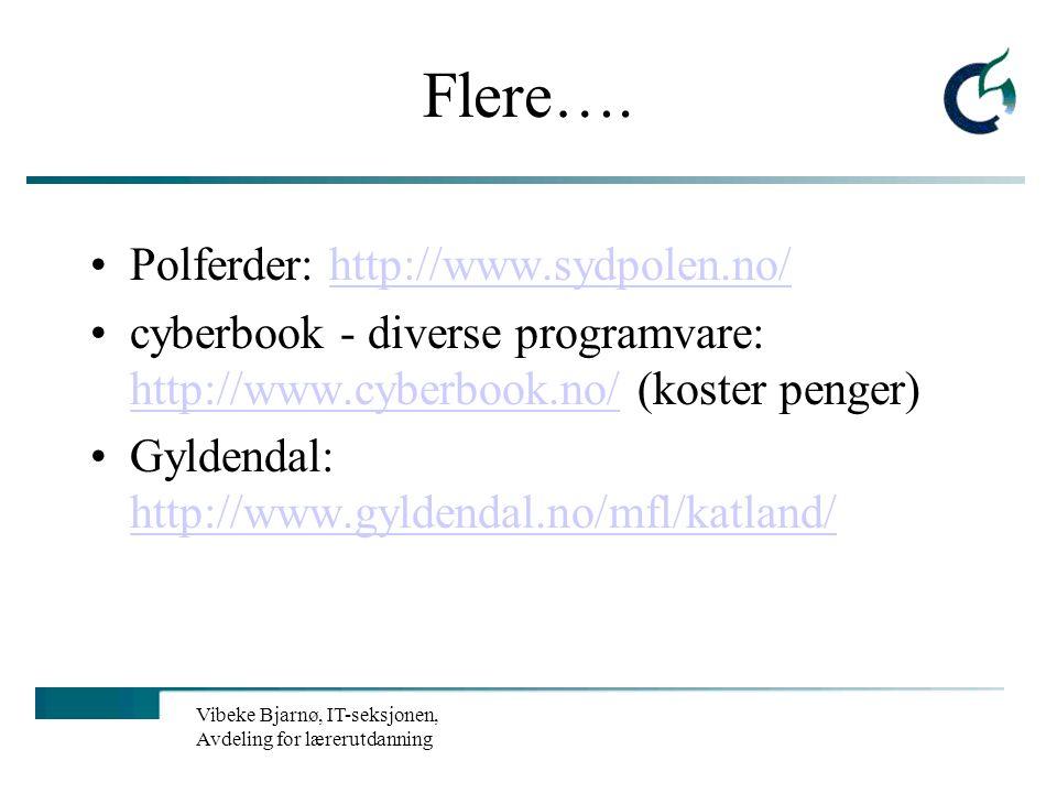 Vibeke Bjarnø, IT-seksjonen, Avdeling for lærerutdanning Matteressur med muligheter for barneskolen Fin interaktiv side på matematikk: http://www.mate