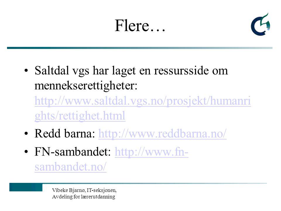 Vibeke Bjarnø, IT-seksjonen, Avdeling for lærerutdanning Flere…. Polferder: http://www.sydpolen.no/http://www.sydpolen.no/ cyberbook - diverse program