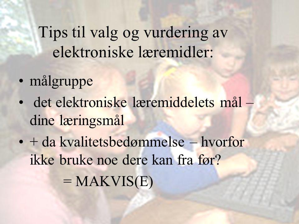 Vibeke Bjarnø, IT-seksjonen, Avdeling for lærerutdanning EKSTRA