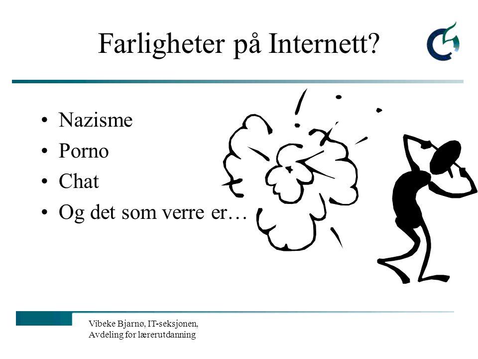 Vibeke Bjarnø, IT-seksjonen, Avdeling for lærerutdanning Tilleggskriterier Hva mener de unge selv? Pia Grünbaum spør i sin bok