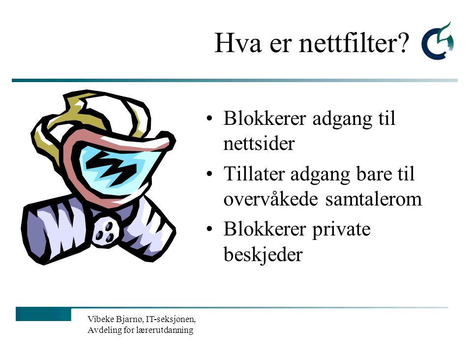 Vibeke Bjarnø, IT-seksjonen, Avdeling for lærerutdanning Farligheter på Internett? Nazisme Porno Chat Og det som verre er…