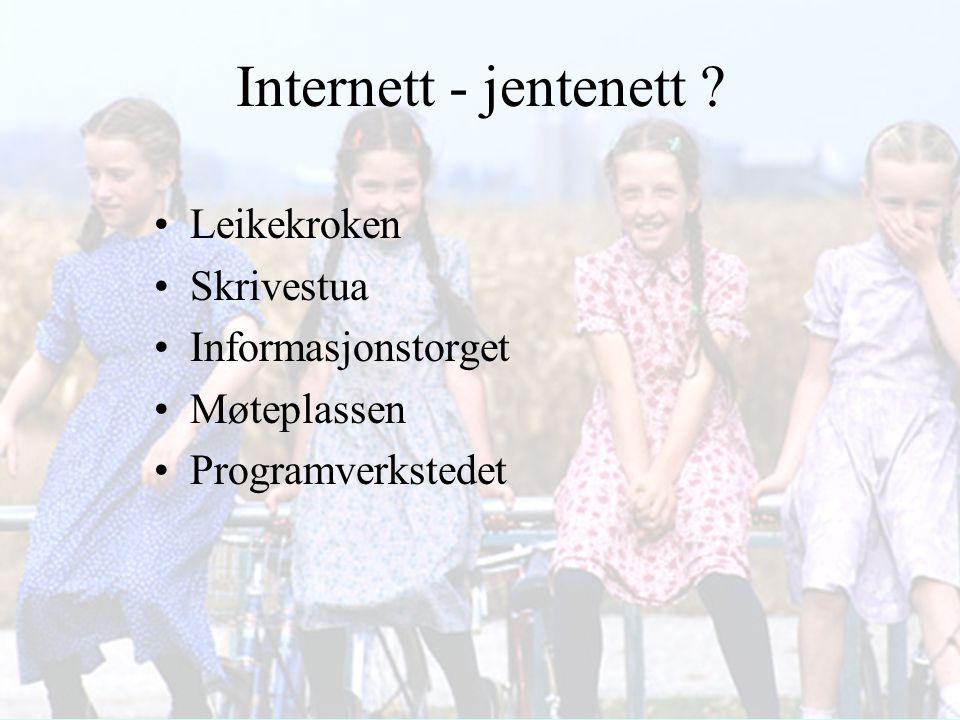 Internett - jentenett ? Leikekroken Skrivestua Informasjonstorget Møteplassen Programverkstedet