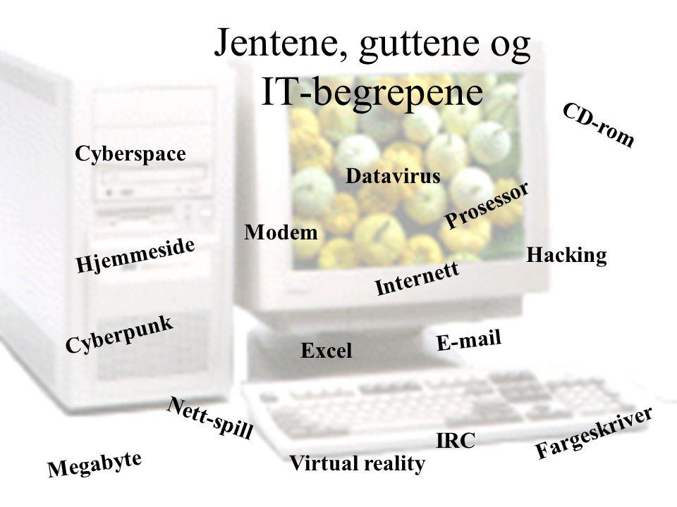 CD-rom Hjemmeside E-mail Nett-spill Internett Datavirus Excel Cyberpunk IRC Cyberspace Prosessor Hacking Fargeskriver Modem Megabyte Virtual reality Jentene, guttene og IT-begrepene
