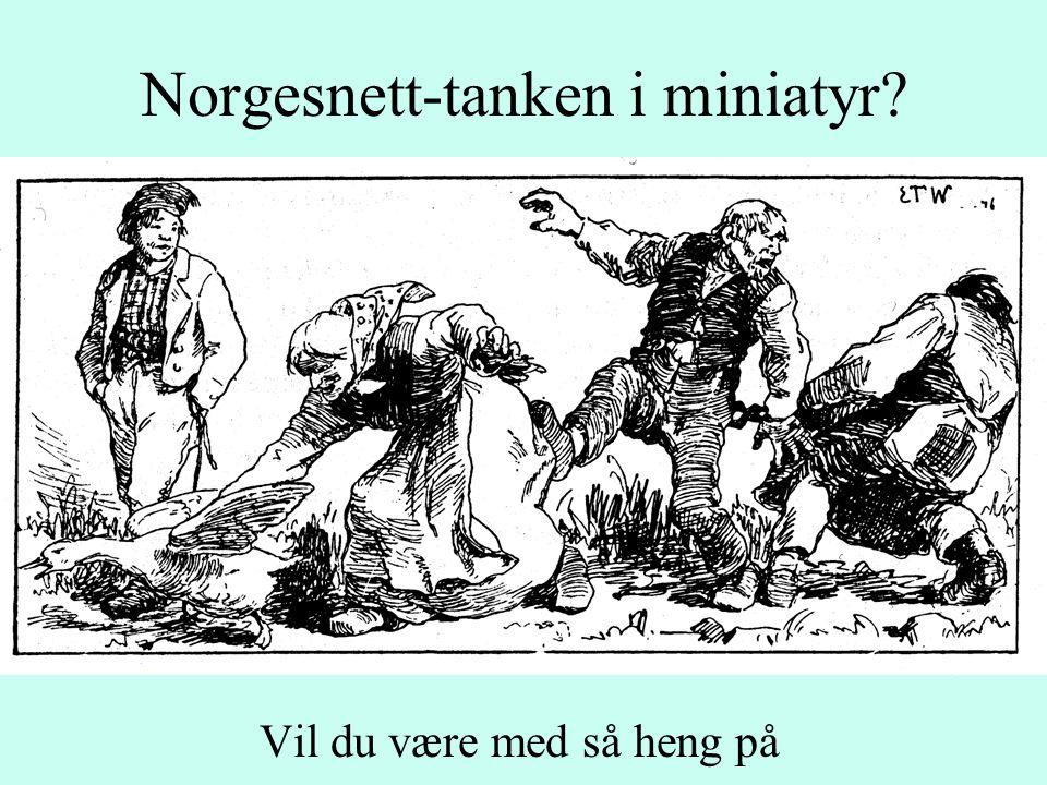 Norgesnett-tanken i miniatyr Vil du være med så heng på