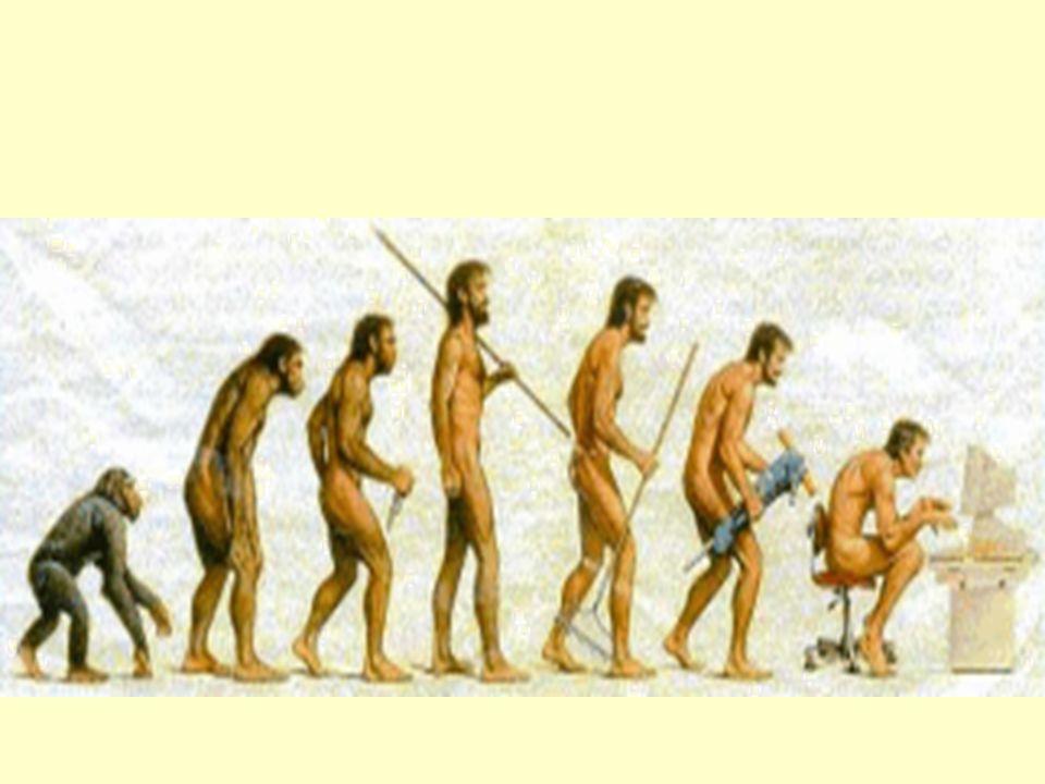 Omstilling for virksomheten Fleksibilitet, mobilitet, globalisering Outsourcing: legge ut deler av virksomheten på anbud Spin-off: skille ut deler av virksomheten som egne selskaper Slå sammen oppgaver og jobber = Kombinere og integrere jobber = Færre gjør mer Teamarbeid Mer kompetansekrevende jobber Omgjøring av ansatte til freelancere Telefonbasert kundestøtte er en voksende bransje.