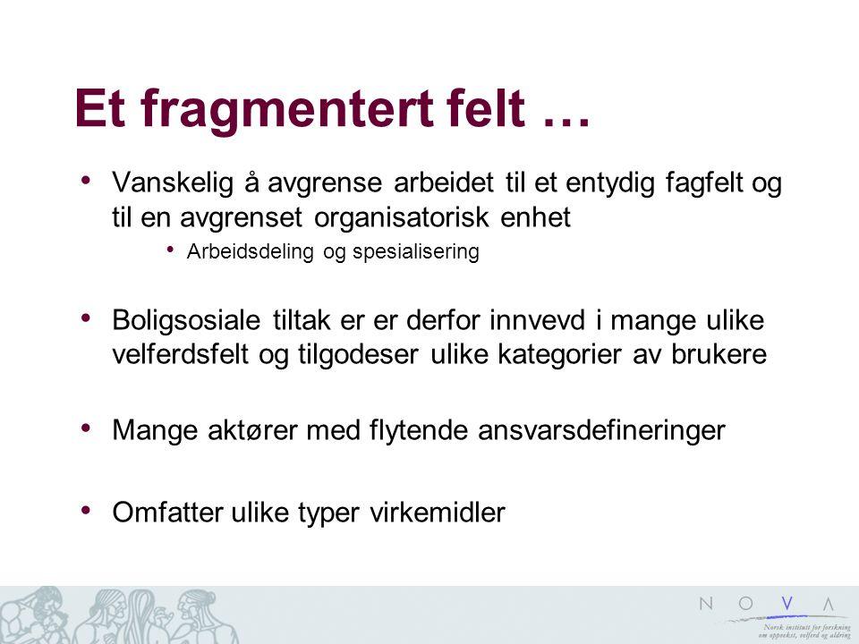 Et fragmentert felt … Vanskelig å avgrense arbeidet til et entydig fagfelt og til en avgrenset organisatorisk enhet Arbeidsdeling og spesialisering Bo