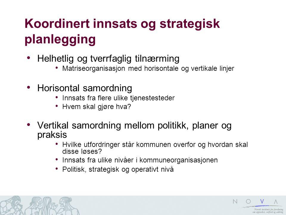 Koordinert innsats og strategisk planlegging Helhetlig og tverrfaglig tilnærming Matriseorganisasjon med horisontale og vertikale linjer Horisontal sa