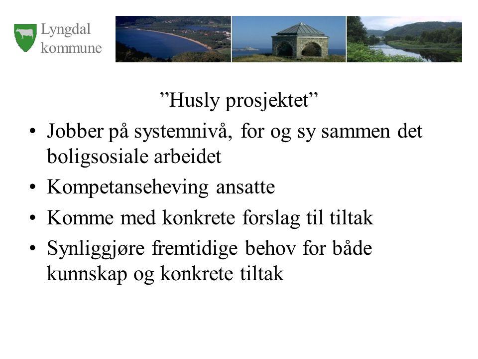 Lyngdal kommune Husly prosjektet Jobber på systemnivå, for og sy sammen det boligsosiale arbeidet Kompetanseheving ansatte Komme med konkrete forslag til tiltak Synliggjøre fremtidige behov for både kunnskap og konkrete tiltak