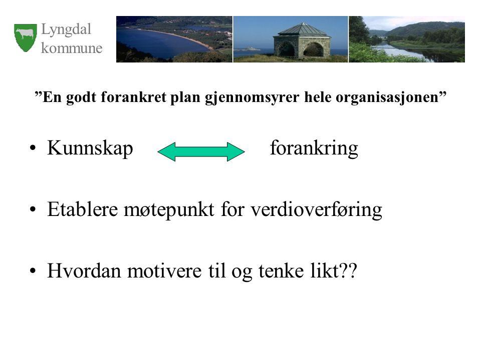 Lyngdal kommune En godt forankret plan gjennomsyrer hele organisasjonen Kunnskap forankring Etablere møtepunkt for verdioverføring Hvordan motivere til og tenke likt??