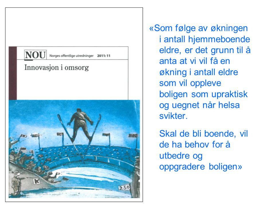 Et samarbeidsprosjekt mellom NAV Arbeids og velferdsetaten og Husbanken Målgruppe: Eldre og funksjonshemmede Omfang: 15 forsøkskommuner i Hordaland og Sør-Trøndelag