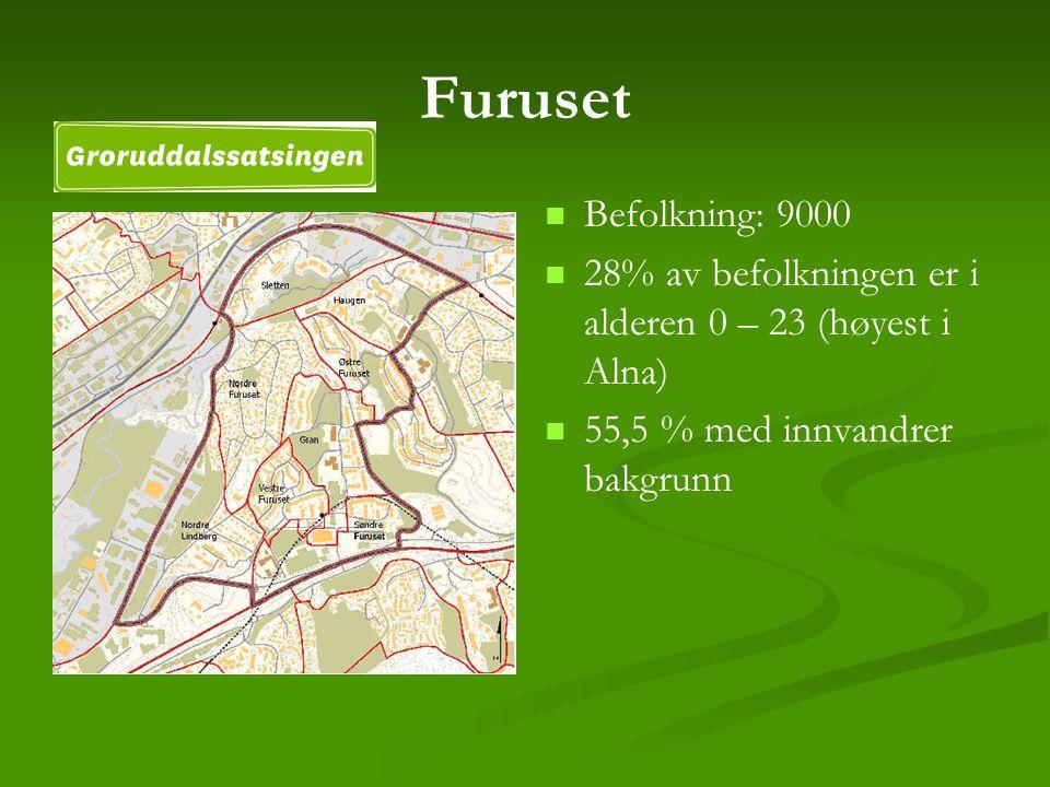 Furuset Befolkning: 9000 28% av befolkningen er i alderen 0 – 23 (høyest i Alna) 55,5 % med innvandrer bakgrunn
