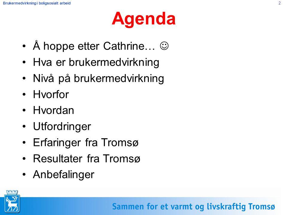 Brukermedvirkning i boligsosialt arbeid 2 Agenda Å hoppe etter Cathrine… Hva er brukermedvirkning Nivå på brukermedvirkning Hvorfor Hvordan Utfordring