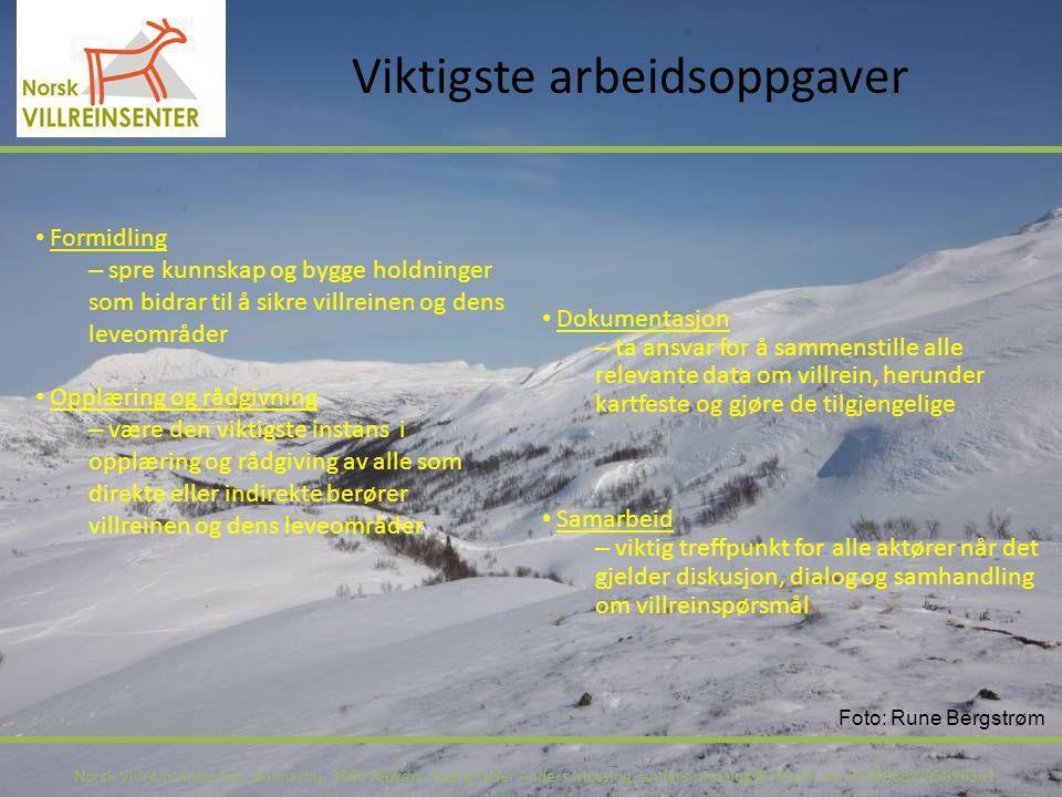 Viktigste arbeidsoppgaver Norsk Villreinsenter Sør, Skinnarbu, 3660 Rjukan, Daglig leder Anders Mossing, anders.mossing@villrein.no, 35080582/95896361