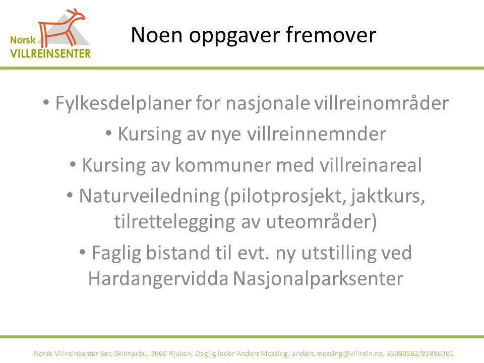 Noen oppgaver fremover Norsk Villreinsenter Sør, Skinnarbu, 3660 Rjukan, Daglig leder Anders Mossing, anders.mossing@villrein.no, 35080582/95896361 Fy
