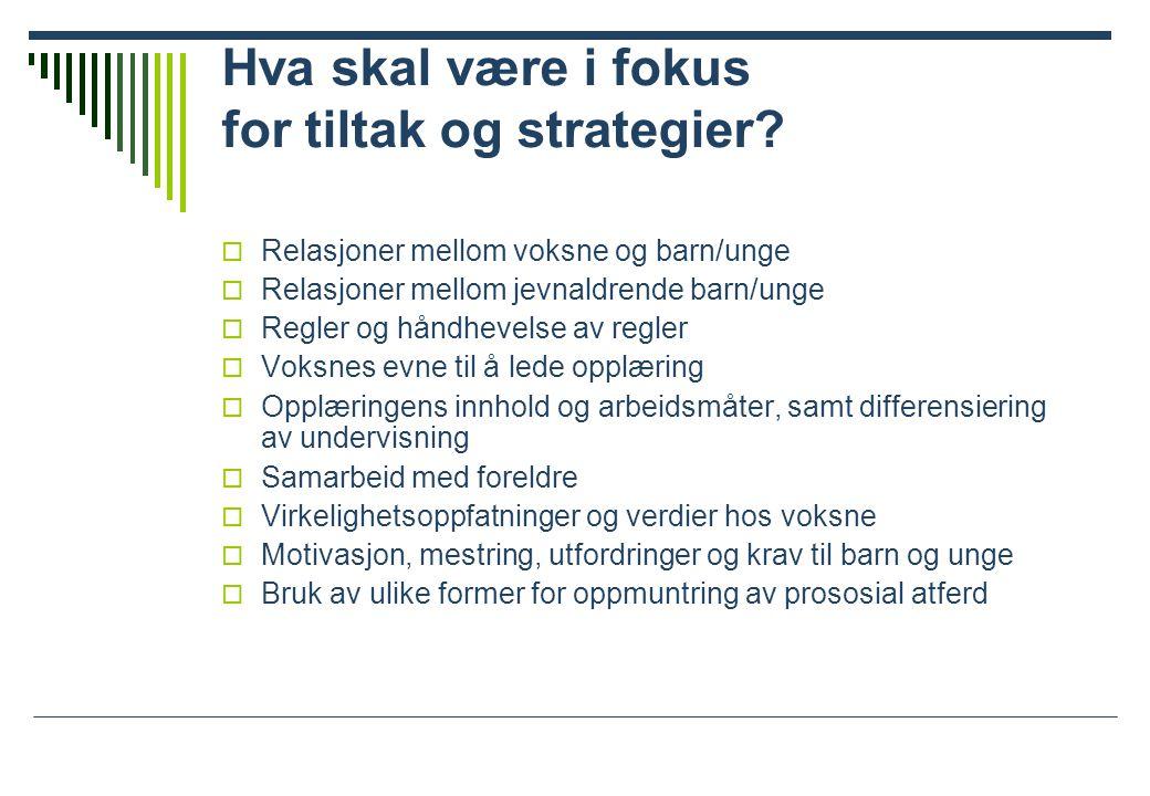 Hva skal være i fokus for tiltak og strategier.