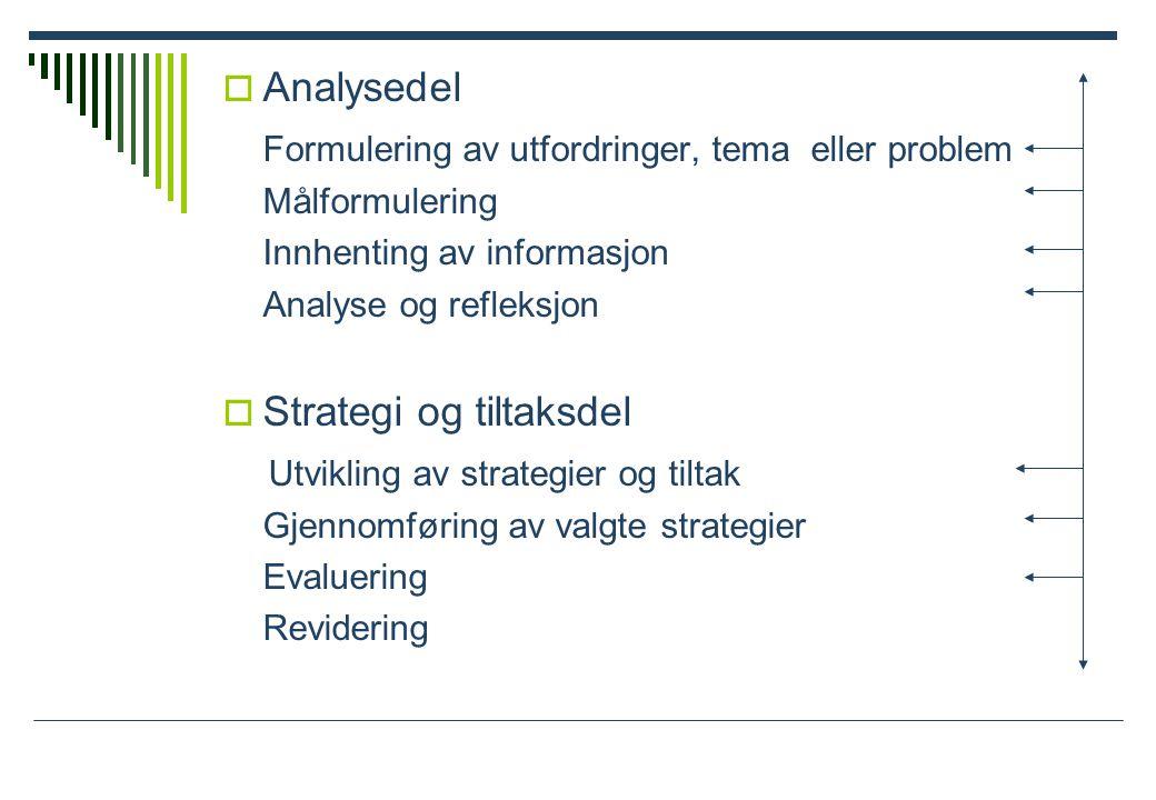  Analysedel Formulering av utfordringer, tema eller problem Målformulering Innhenting av informasjon Analyse og refleksjon  Strategi og tiltaksdel Utvikling av strategier og tiltak Gjennomføring av valgte strategier Evaluering Revidering