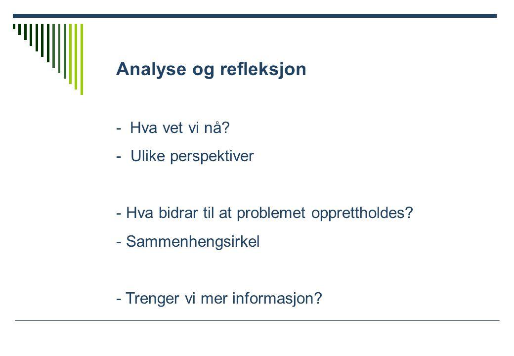Analyse og refleksjon - Hva vet vi nå.