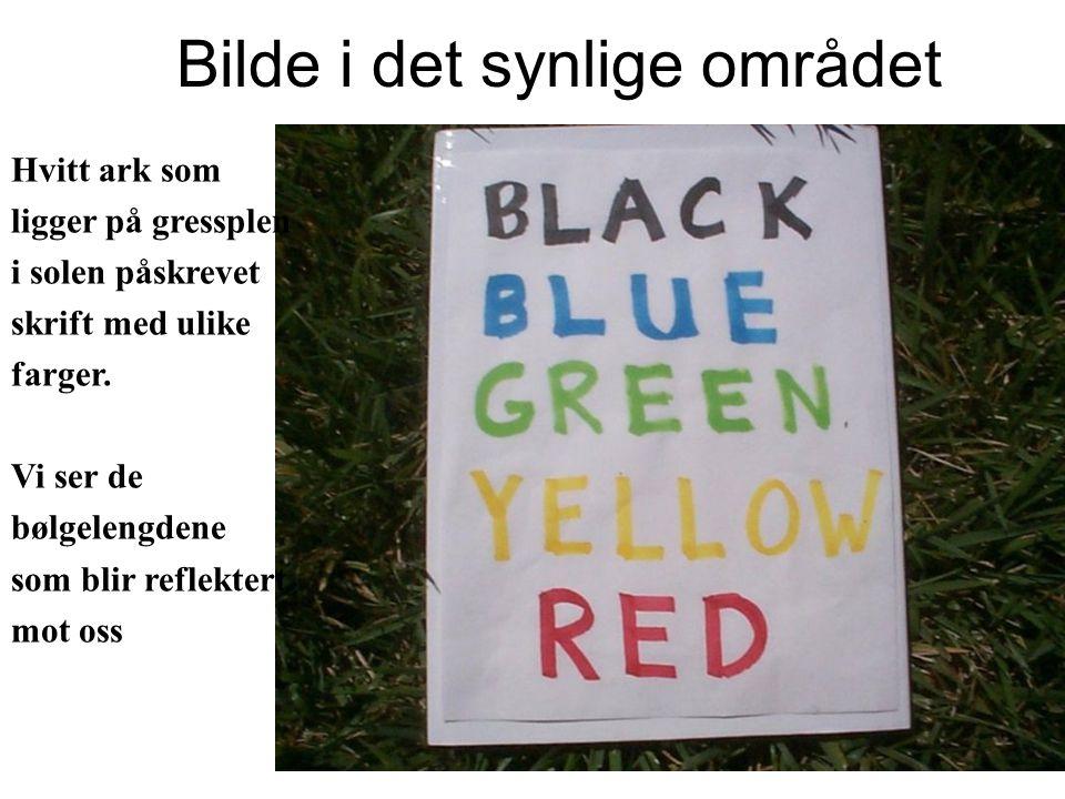 Bilde i det synlige området Hvitt ark som ligger på gressplen i solen påskrevet skrift med ulike farger.