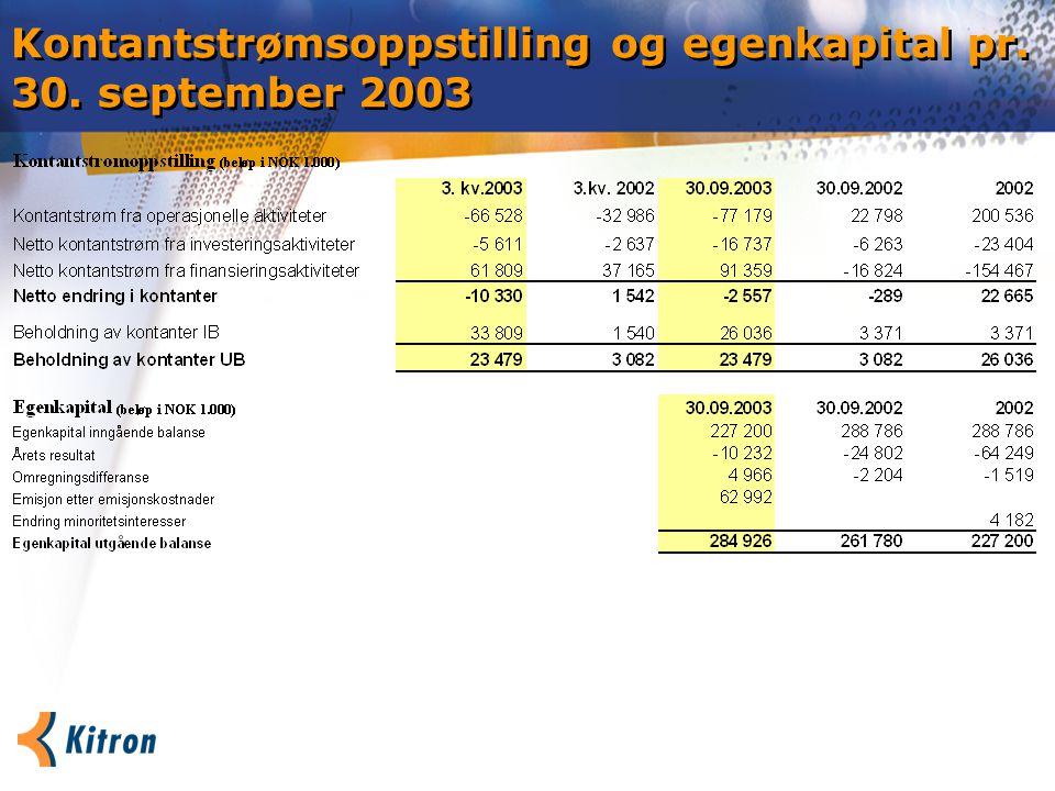 Kontantstrømsoppstilling og egenkapital pr. 30. september 2003