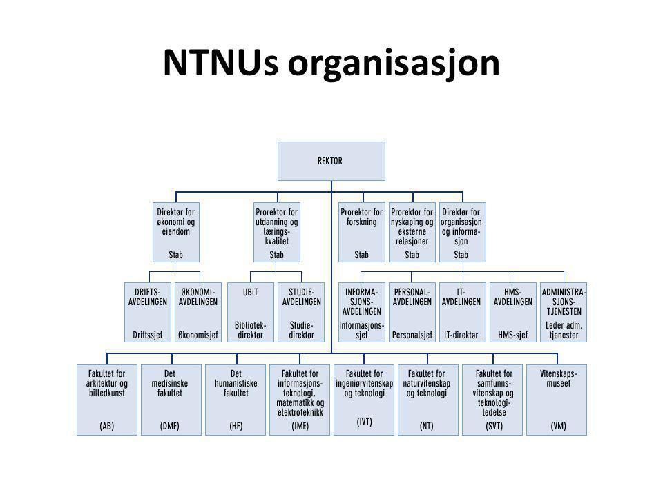 NTNUs organisasjon