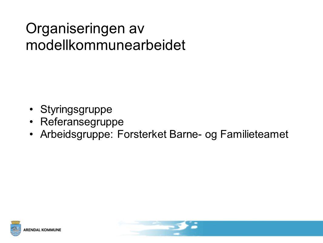 Organiseringen av modellkommunearbeidet Styringsgruppe Referansegruppe Arbeidsgruppe: Forsterket Barne- og Familieteamet