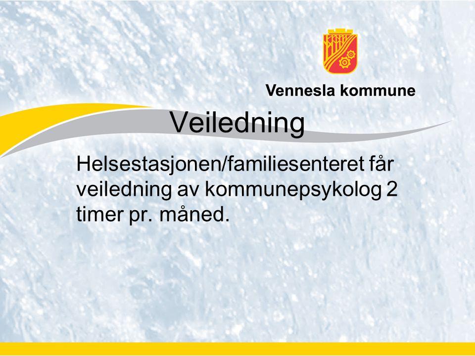 Veiledning Helsestasjonen/familiesenteret får veiledning av kommunepsykolog 2 timer pr. måned.