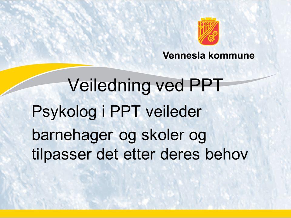 Veiledning ved PPT Psykolog i PPT veileder barnehager og skoler og tilpasser det etter deres behov