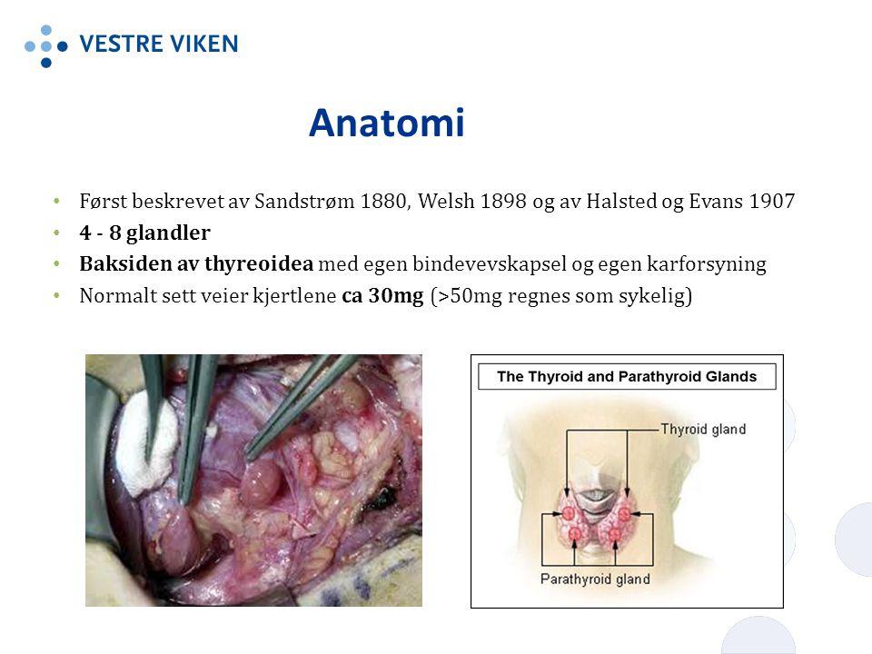 Anatomi Først beskrevet av Sandstrøm 1880, Welsh 1898 og av Halsted og Evans 1907 4 - 8 glandler Baksiden av thyreoidea med egen bindevevskapsel og eg