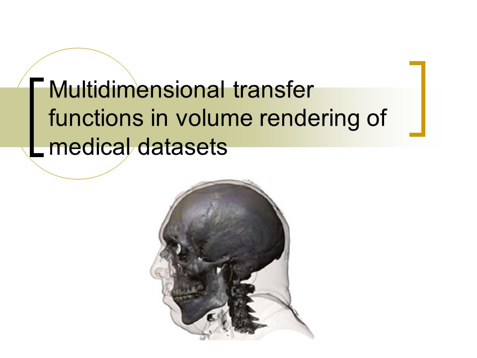 Multidimensional transfer functions in volume rendering of medical datasets
