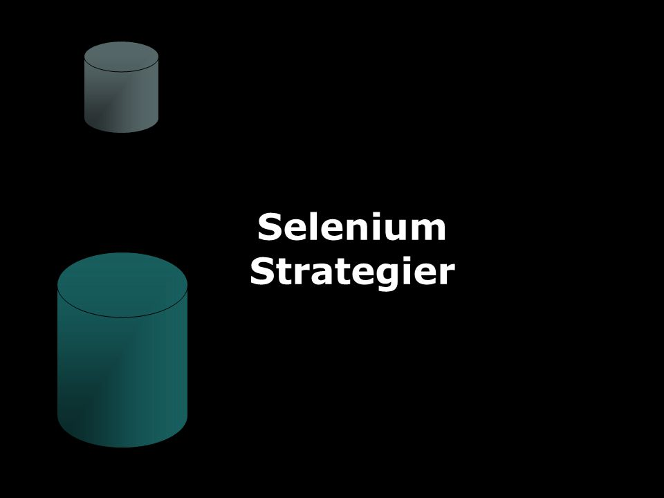 JAFS17 Selenium Strategier