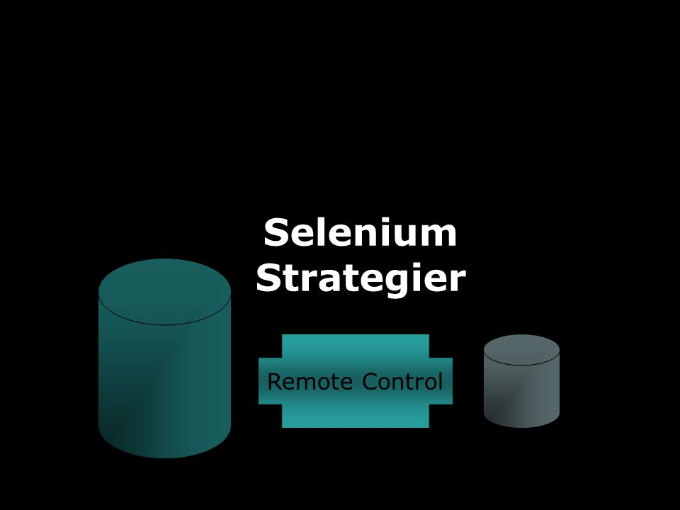 JAFS19 Selenium Strategier Remote Control