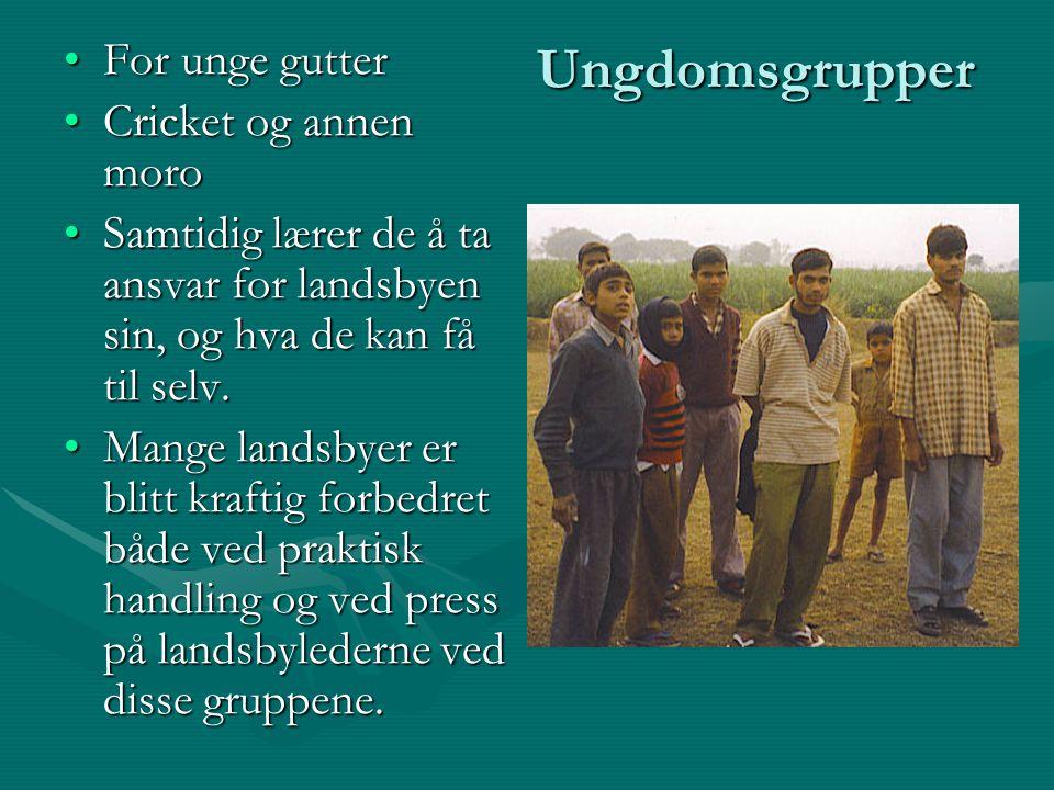 Ungdomsgrupper For unge gutterFor unge gutter Cricket og annen moroCricket og annen moro Samtidig lærer de å ta ansvar for landsbyen sin, og hva de ka