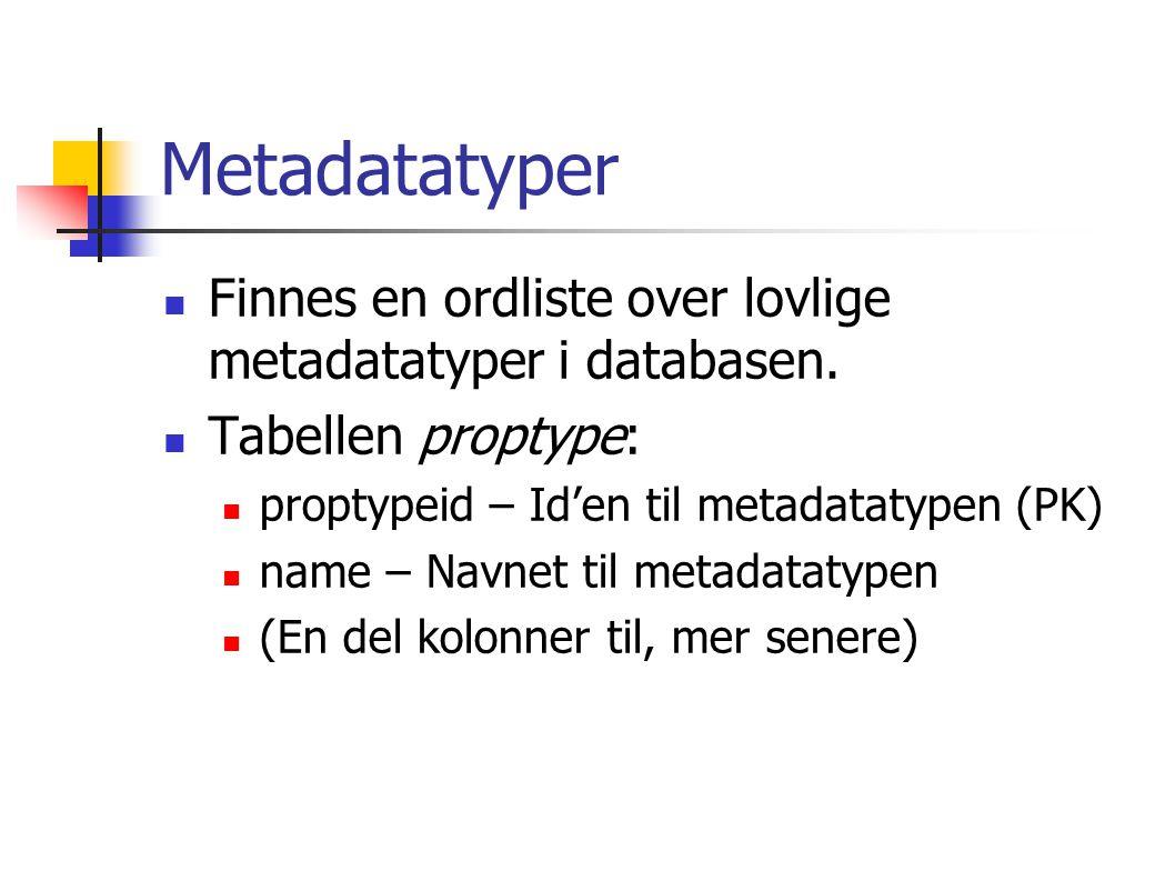 Metadatatyper Finnes en ordliste over lovlige metadatatyper i databasen.