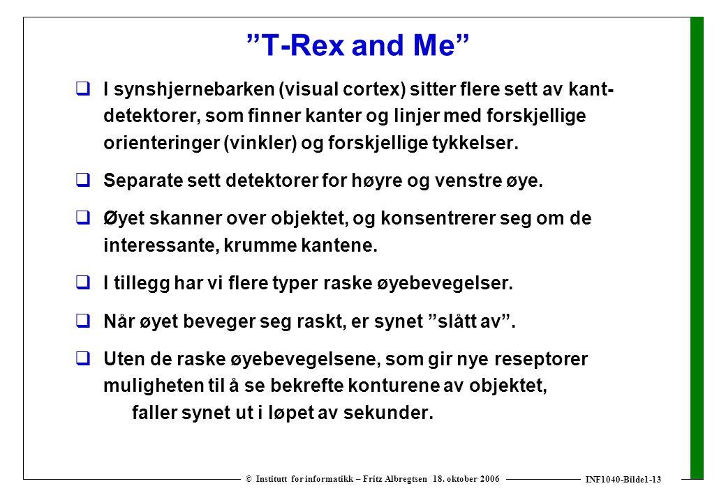 """INF1040-Bilde1-13 © Institutt for informatikk – Fritz Albregtsen 18. oktober 2006 """"T-Rex and Me""""  I synshjernebarken (visual cortex) sitter flere set"""