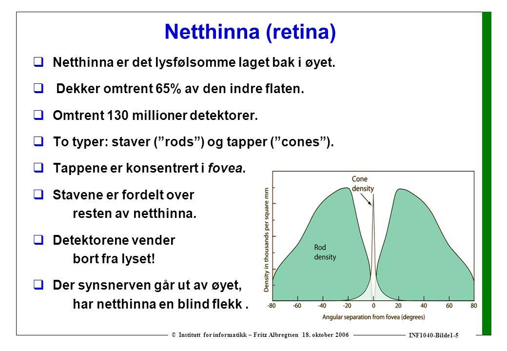 INF1040-Bilde1-5 © Institutt for informatikk – Fritz Albregtsen 18. oktober 2006 Netthinna (retina)  Netthinna er det lysfølsomme laget bak i øyet. 