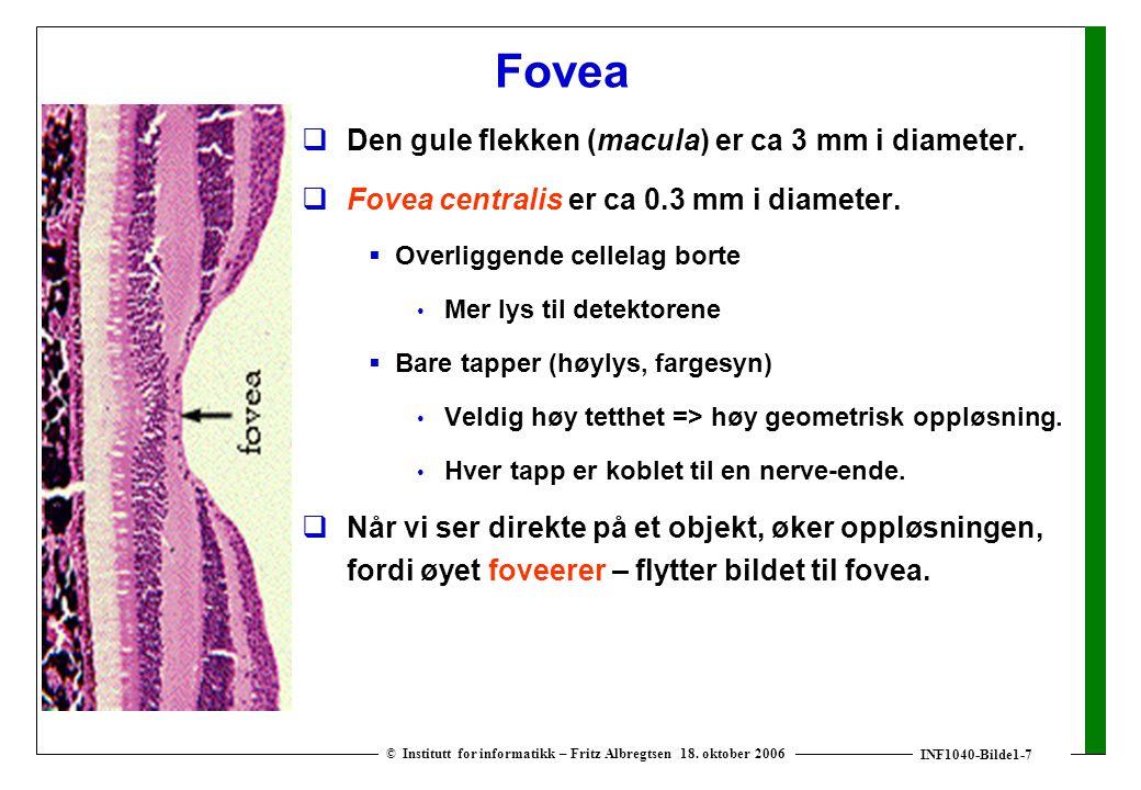 INF1040-Bilde1-7 © Institutt for informatikk – Fritz Albregtsen 18.
