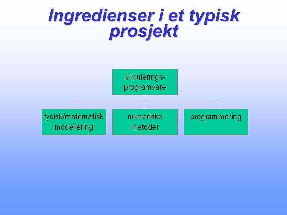 Ingredienser i et typisk prosjekt